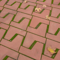 Adoquín-Palma - pavé en béton