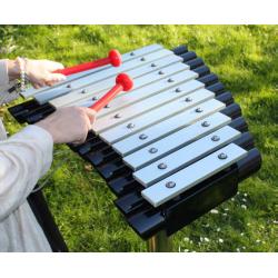 Cadenza - Music Play - Glockenspiel