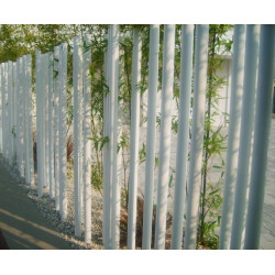 modo Bamboo - Zaun