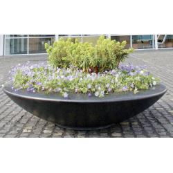 Etna Mactra - bac à plantes et arbustes