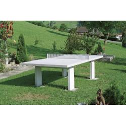 Ping-Pong Tisch grau