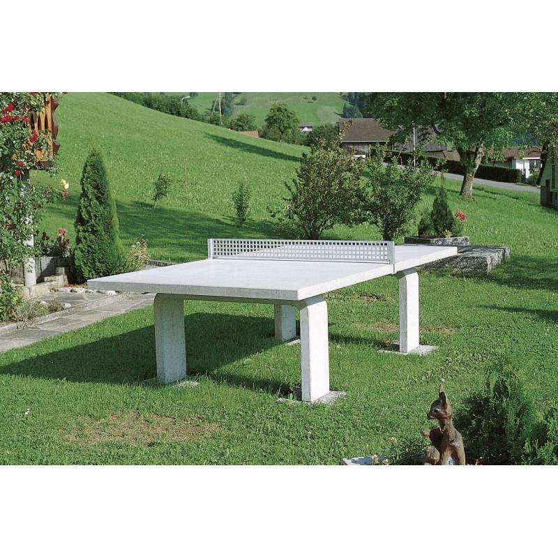 Table de ping-pong grise